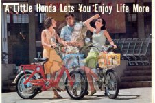 Honda P50 LITTLE HONDA GENERAL EXPORT