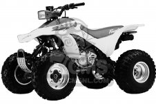 Honda TRX250X FOURTRAX 250X 1988 USA