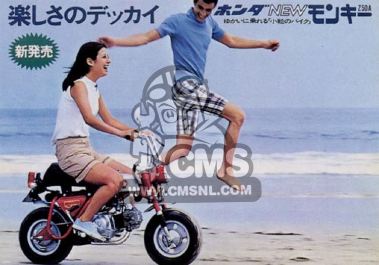 Honda Z50 MONKEY  GORILLA