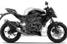 BR250EFS Z250SL 2015 EUROPE,MIDDLE EAST,AFRICA