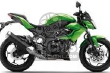BR250FFS Z250SL ABS 2015 EUROPE,MIDDLE EAST,AFRICA
