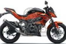 BR250FGF Z250SL ABS 2016 EUROPE,MIDDLE EAST,AFRICA