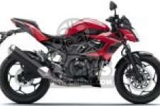 BR250FHF Z250SL 2017 EUROPE,MIDDLE EAST,AFRICA