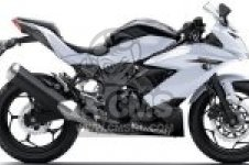 BX250BFF NINJA 250SL ABS 2015 EUROPE,MIDDLE EAST,AFRICA