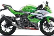 BX250BFSA NINJA 250SL ABS 2015 EUROPE,MIDDLE EAST,AFRICA