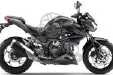 ER300BFF Z300 ABS 2015 EUROPE,MIDDLE EAST,AFRICA