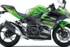 EX400GJFA NINJA 400 2018 EUROPE,MIDDLE EAST,AFRICA