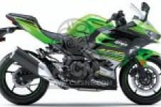 EX400GKFA NINJA 400 2019 EUROPE,MIDDLE EAST,AFRICA