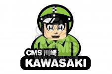 Kawasaki G3SS 1969 USA CANADA parts