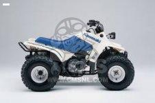 Kawasaki KLF110