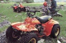 Suzuki Atv Quad