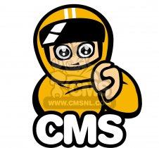 Suzuki RM125 parts: order genuine spare parts online at CMSNL