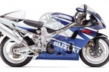Suzuki TL1000
