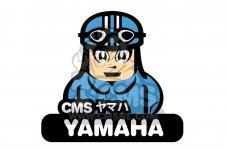 Yamaha Stern drive