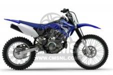 Yamaha TT-R125LW 2009 19C9 EUROPE 1H19C-100EA parts