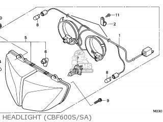 Bulb, Position (12 photo