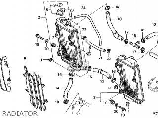 Honda Cr250r Elsinore 2000 y Usa Radiator