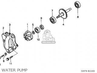 honda cr85r 2005 (5) usa water pump