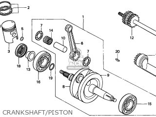 Electric Scooter Parts Diagram moreover Moped Replacement Parts further Lionel Parts Diagram moreover Gas Powered Mobility Scooter as well Gt Alles Rund Ums Pitbike Fred 50 250cc Lt T4. on 49cc scooter wiring diagram