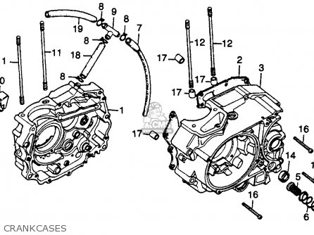 Honda Ct125 Trail 125 Usa Crankcases