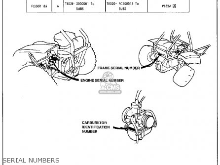 1963 Vw Beetle Wiring Harness
