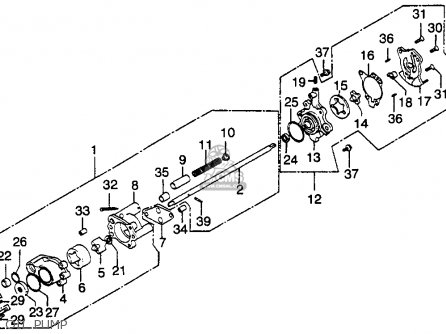 Wiring Diagram Honda Ch80