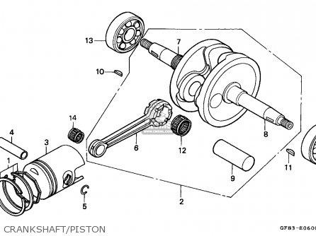Honda Qr50 1983 D Canada Parts Lists And Schematics