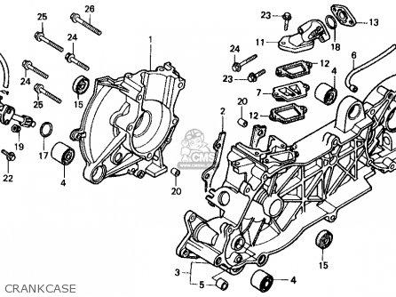 Honda Sb50 Es Elite E 1988 j Usa Crankcase