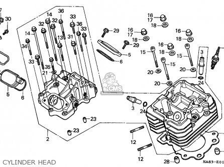 Honda 250 Recon Rear End Diagram