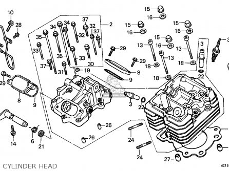 trx 300 rear differential diagram  trx  free engine image