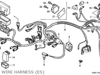 trx450es wiring diagram 1997 f250 wiring diagram door