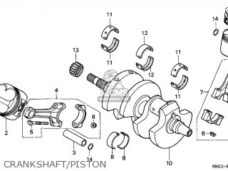 Honda Vfr 800 Engine Honda CBR 1100 Engine wiring diagram