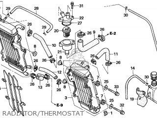 Radiator R photo