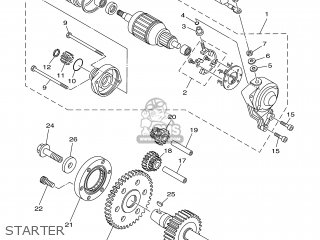 Gear, Starting Motor photo