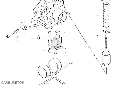 Moped Carburetor Line Diagram also Kohler Carburetor Service Parts List P 11673 furthermore Gas In Carburetor Lawn Mower also Ryobi Weed Trimmer Parts Diagram likewise 223 L 2006 01. on walbro carb fuel line diagram