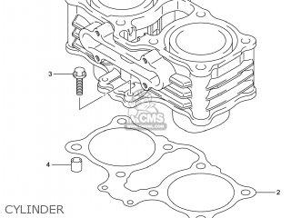 Suzuki Gw250 Inazuma 2014 l4 Usa e03 Cylinder