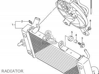 Suzuki Gw250 Inazuma 2014 l4 Usa e03 Radiator
