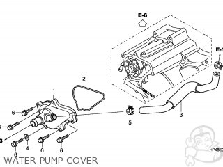 COVER,WATER PUMP