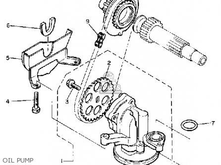 yamaha xj650rj seca 1982 oil pump_mediumyau0792a 12_7ba7 1982 yamaha maxim 750 wiring diagram 1982 find image about,Yamaha Xj 550 Wiring Diagram