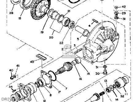 custom chopper wiring diagram