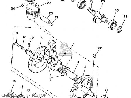 Wiring Diagram For 49cc Quad on 110cc mini chopper wiring diagram