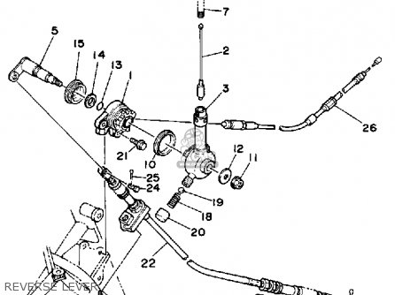 Diagram Harley Davidson Rear Fender Diagram