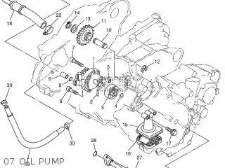 07 oil pump