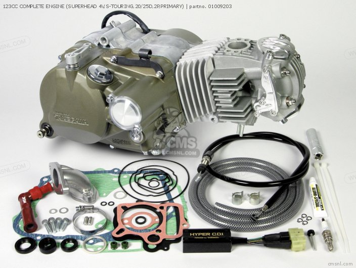 123CC COMPLETE ENGINE (SUPERHEAD 4V,S-TOURING,20/25D,2P,PRIMARY)