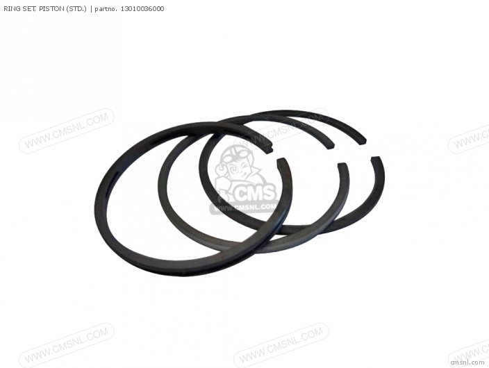 13010-036-014 RING SET  PISTON