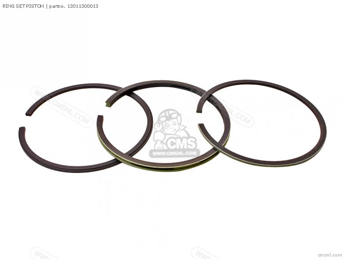 (13011300024) RING SET PISTON