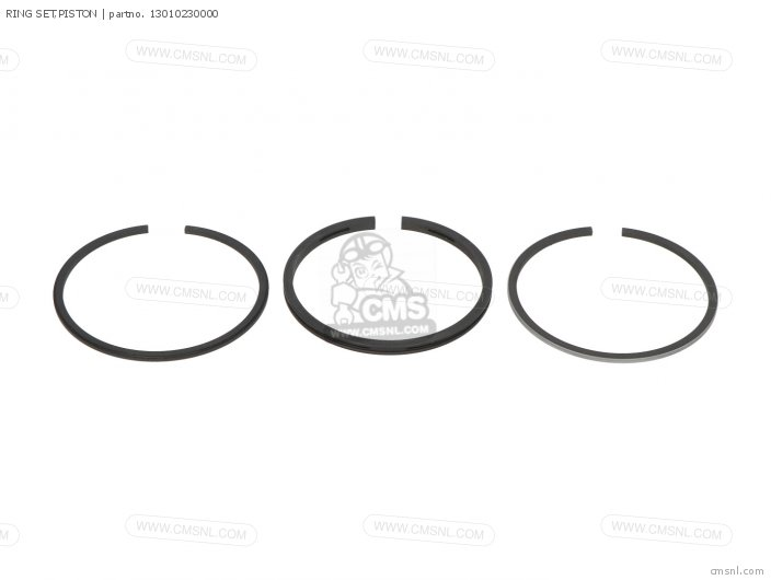 (13011399003) RING SET,PISTON