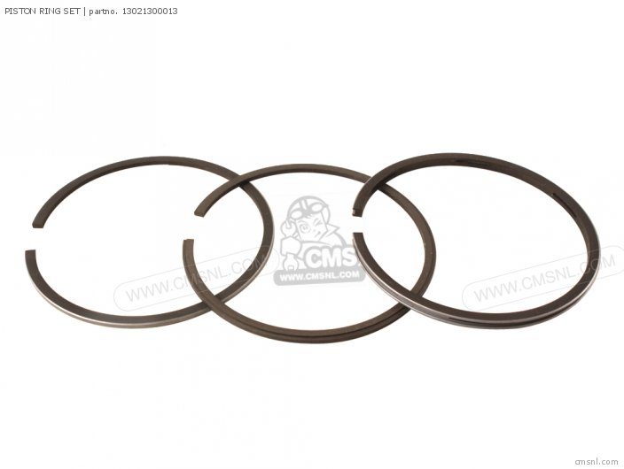 (13021300024) PISTON RING SET