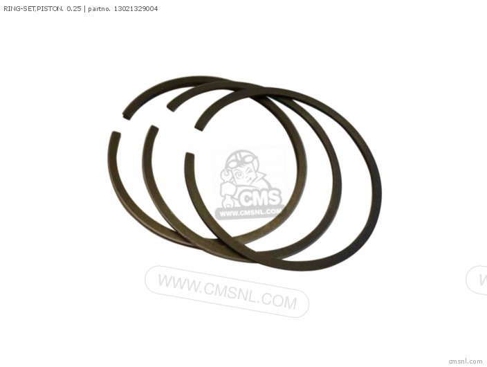 (13021329005) RING-SET,PISTON