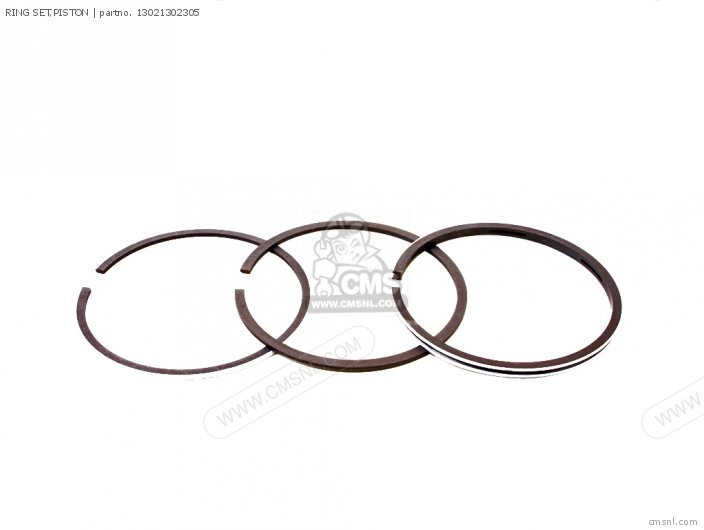 (13021439005) RING SET,PISTON